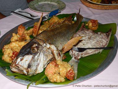Snapper and Lobster dinner